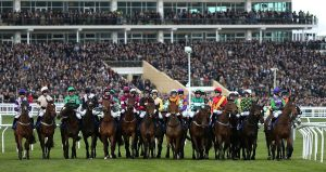 Cheltenham Gold Cup Racing